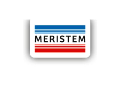 QUIMICAS MERISTEM S.L