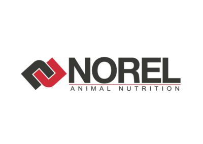 NOREL S.A